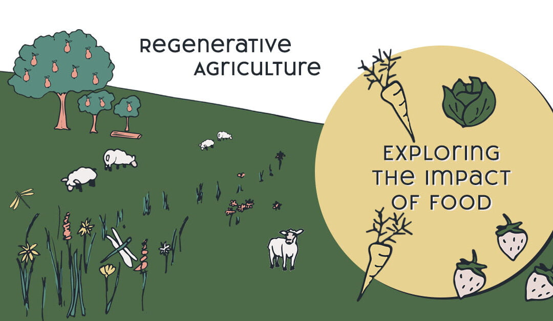 Regenerative Agriculture – The Impact Of Food