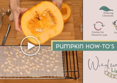Pumpkin How-To Videos. Face Mask & Prepping Seeds.
