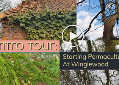 Intro Tour : Starting Permaculture at Winglewood. VIDEO